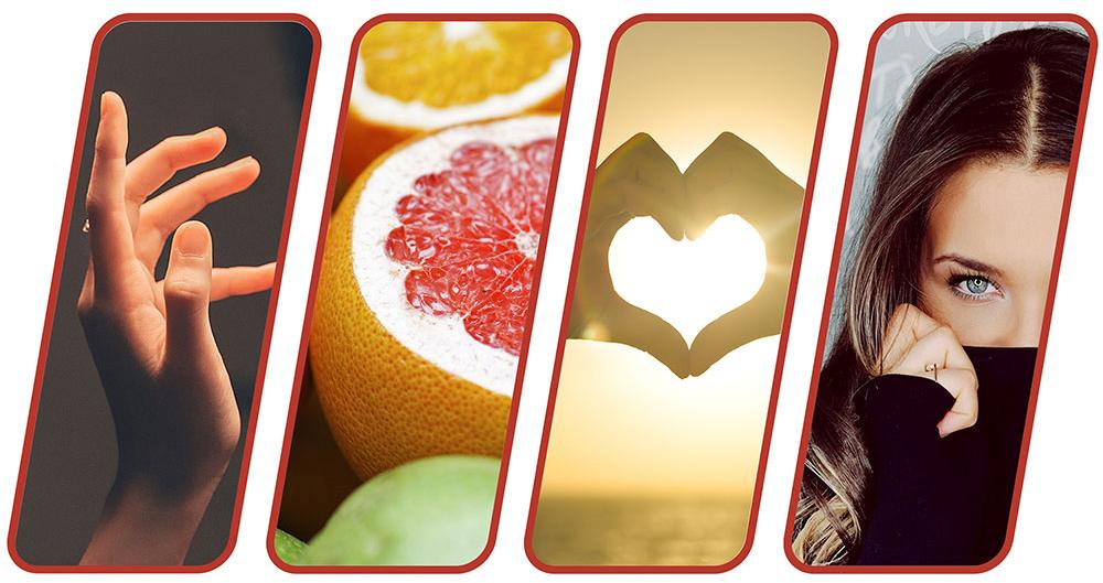 grapefruitkernextraktxdmQ5hZpDt5cP